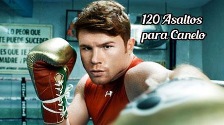 Photo of Canelo entrenará 120 asaltos para estar listo ante Alfredo Angulo