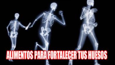 Photo of Alimentos para fortalecer los huesos