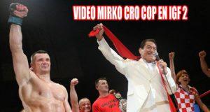 victoria de mirko cro cop