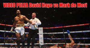 Video-pelea-David-Haye-vs-Mark-de-Mori