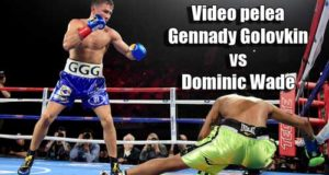 Video-pelea-Gennady-Golovkin-vs-Dominic-Wade-