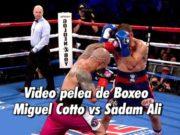 Video pelea de Boxeo Miguel Cotto vs Sadam Ali