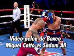 Video pelea de Boxeo Miguel Cotto vs Sadam Ali