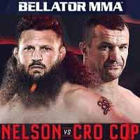 Photo of 2019 pelea de MMA – Mirko Cro Cop Filipovic vs Roy Nelson 2 – Bellator 216