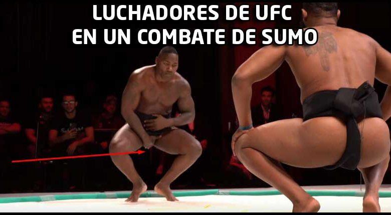 Photo of ? | MEJORES LUCHADORES DE UFC EN COMBATE DE SUMO