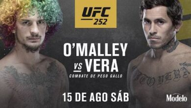 Photo of 🎥 Sean O'Malley vs Marlon Vera video completo de la pelea de UFC 252 HL