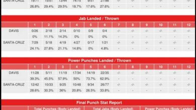 Photo of CompuBox Punch Stats -Gervonta Davis vs.Leo Santa Cruz